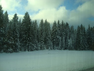 A beautiful winter scenery in Black Forest, Germany.© www.countrysidetrip.com